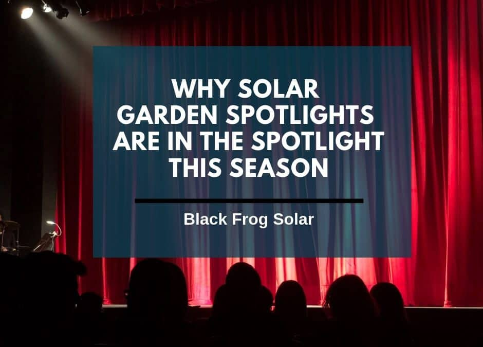 Why solar garden spotlights are in the spotlight this season