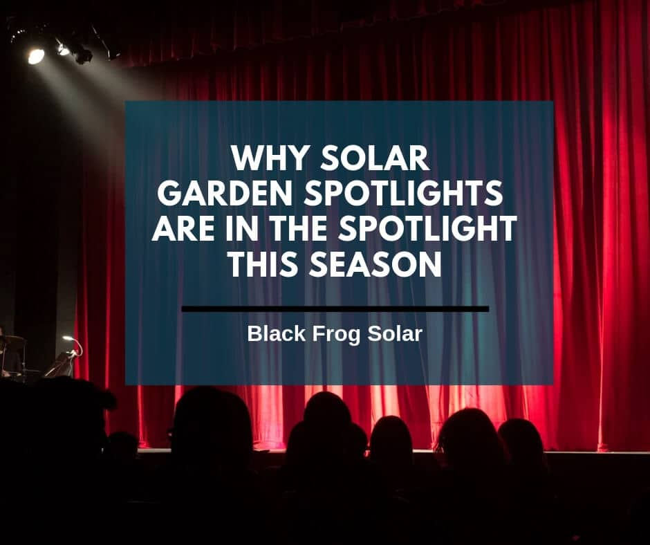 Why solar garden spotlights are in the spotlight this season