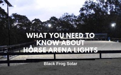 What you need to know about horse arena lights